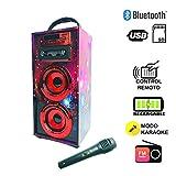 Altavoz Karaoke con Micrófono 35W Reproductor Radio inalámbrico Portátil FM MP3 Dos Entrada Mic Madera USB SD Card Recargable con Mando (Rojo)