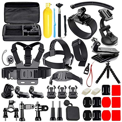 50 in 1 Action Camera Accessories Kit for GoPro Hero 2018 GoPro...