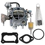 Dokili Carburador de repuesto para Rochester 2GC 2 Barrel Type Chevy 5.7L 350 6.6L 400 motores B60 Blazer C10 C30 C50 C50 C60 C70 Camaro Caprice Chevette G10 G30 K20 K30 P10 20 P3. 0 Malibu