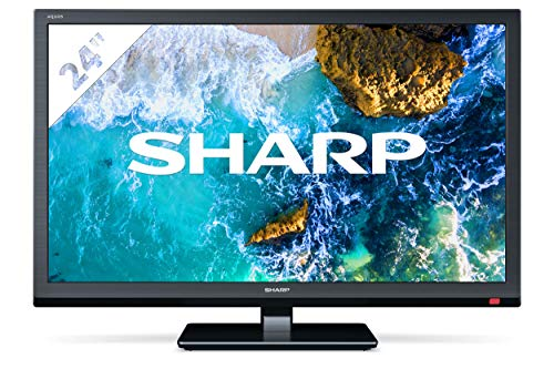 Sharp Aquos 24BB0E - 24' HD Ready LED TV, DVB-T2/S2, 1366 x 768 Pixels, Nero, 2xHDMI 1xUSB, 2020 [Classe di efficienza energetica F]
