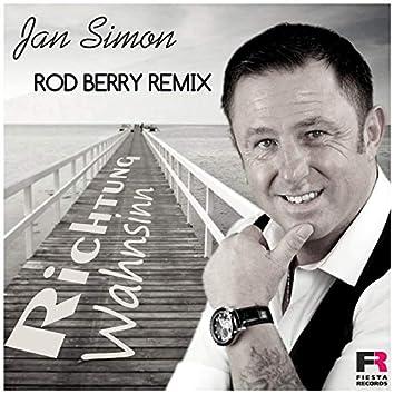 Richtung Wahnsinn (Rod Berry Remix)