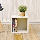Way Basics Eco Stackable Storage Cube, Cubby Organizer (Tool-Free Assembly and Uniquely Crafted from Sustainable Non Toxic zBoard paperboard), White