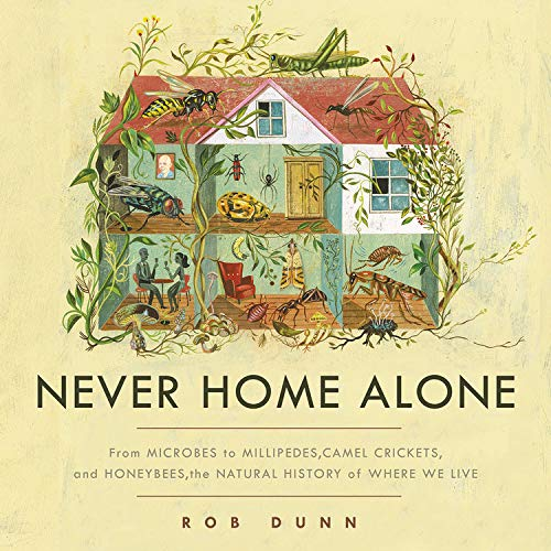 Never Home Alone  By  cover art