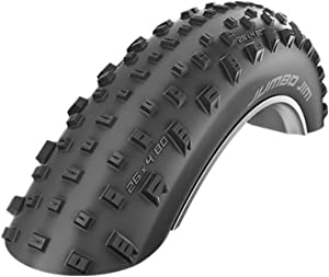 SCHWALBE Jumbo Jim Evolution TL Easy Folding Tire