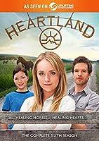 Heartland: Season 6 [DVD]