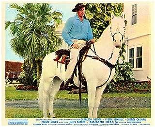 Diamond Head Original Lobby Card Charlton Heston ON Horse