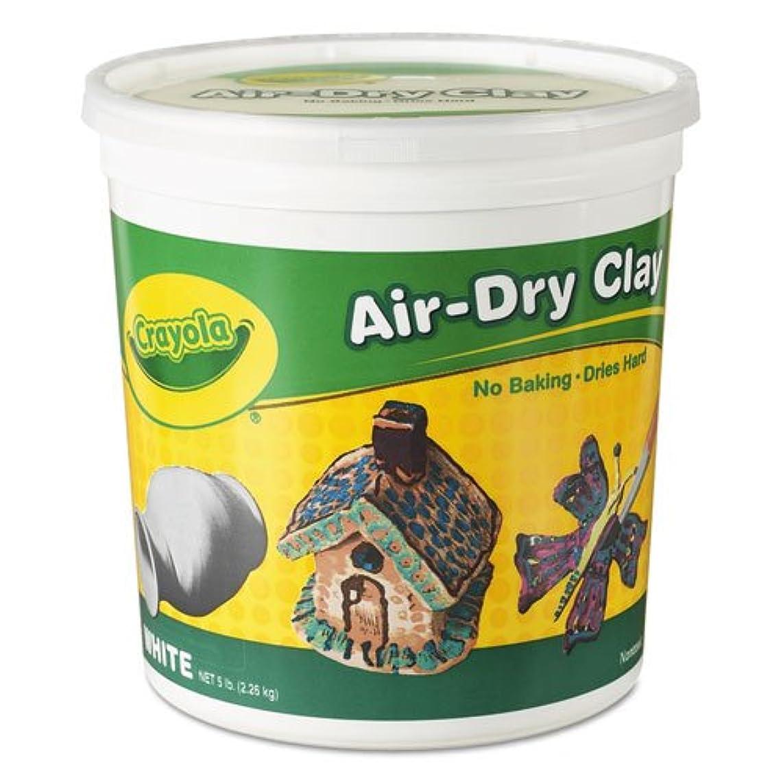 Crayola 575055 Air-Dry Clay, White, 5 lbs