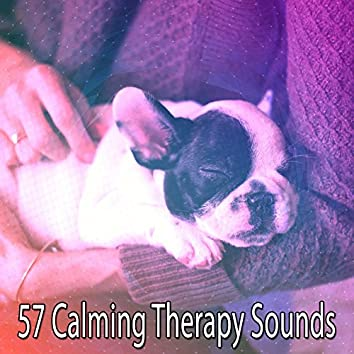 57 Calming Therapy Sounds