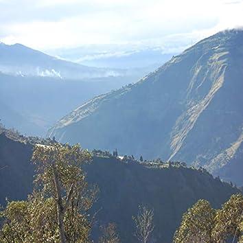A Quito