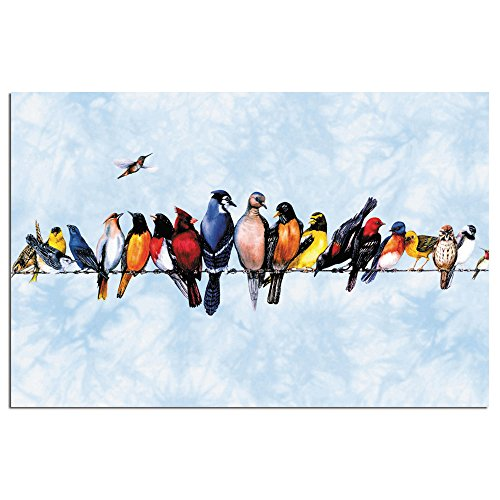 """Tree-Free Greetings EcoNotes Stationary- Blank Note Cards with Envelopes, 4"""" x 6"""", Chorus Line, Bird Themed, Boxed Set of 12 (FS66506)"""