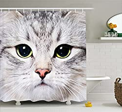 A large cat face on a shower curtain.