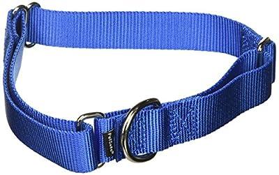 "PetSafe Martingale Collar, 1"" Large, Royal Blue from Toys & Behavior"