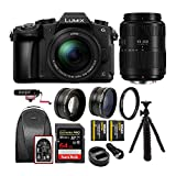 Panasonic LUMIX G85 4K Mirrorless Camera with G Vario 12-60mm and 45-200mm Lens, Microphone, Battery and Dual Charger, Backpack, 64GB Card, Tripod, 58mm Lens Set and Protection Filter Bundle (9 items)