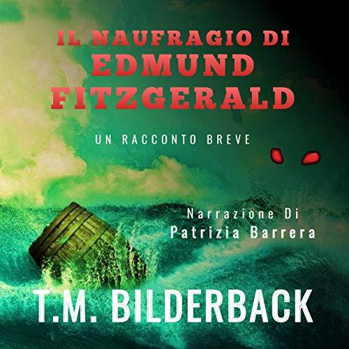 Il Naufragio Di Edmund Fitzgerald [The Shipwreck Of Edmund Fitzgerald] Titelbild