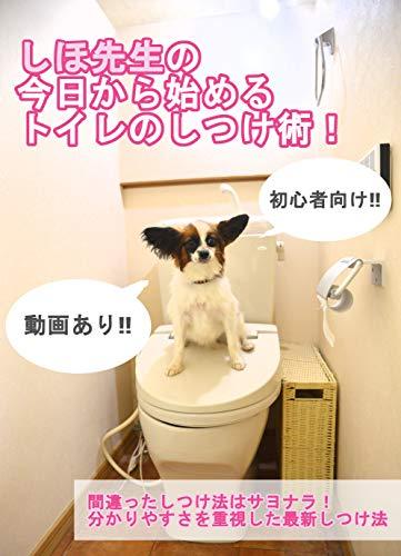 初心者向け!しほ先生の今日から始めるトイレのしつけ術 犬のしつけ教材