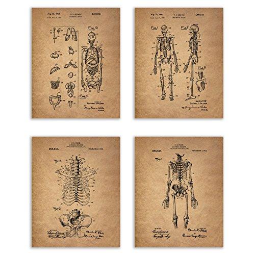Vintage Human Skeleton Patent Print