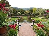 afhk jigsaw puzzle 1000 pezzi di puzzle in legno fai da te puzzle tulipano giardino tesoro bambini adulti giocattoli 3d