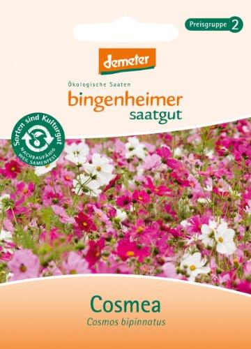Bingenheimer Saatgut - Cosmea - Blumen Saatgut / Samen