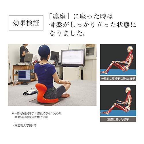 PROIDEA(プロイデア)美姿勢クッション凛座ブラック0070-2391-00