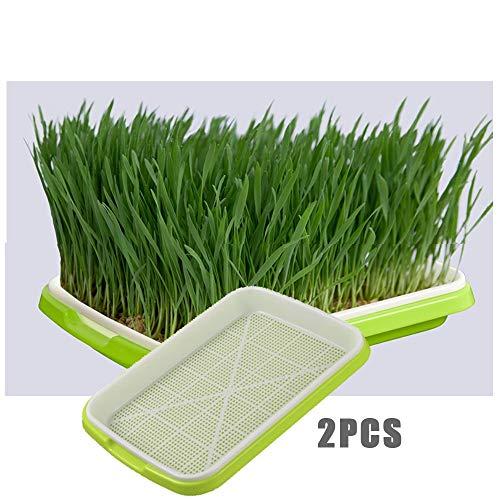 NOLOGO Gxbld-yy 2ST Garten Double Layer Arc Kunststoff Sämlingbehälter Hydroponics Grün Tray Soilless Anbau for die Gartenarbeit Bonsai Katzengras