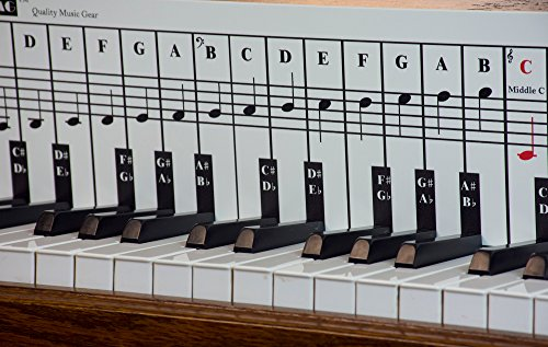 Piano Note Chart, Use Behind the Keys, Made with Foam PVC Sheet, Ideal Visual Tool for Beginners Learning Piano, Easy to Set Up, Cover Four Octaves, Made in USA