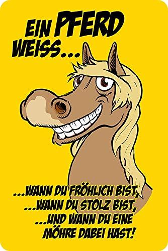 Metalen bord 20x30cm Een paard wit humor spreuk spreuk metalen bord