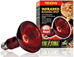 Exo Terra HeatGlo Infrared Spot Lamp (150 W)