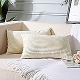 Artscope Juego de 2 decorativas fundas de cojín de 30 x 50 cm, de pana de color puro, felpa suave, juego de fundas de cojín para sofá, coche, dormitorio o casa (beige, 30 x 50 cm)