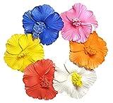 HipGirl 6pc 2.5' Hawaii Hawaiian Flower Foam Hair Clip Vacation Accessory. For Moana Party Supplies, Match Beach Dress and Hawaiian Dresses for Women (6pc Hibiscus Flower Clips)