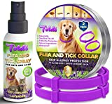 Toldi Dogs-Flea-Treatment, Flea-Spray-plus-Adjustable Flea-Collar-Dogs 8 Month Protection, Tick-Treatment-for-Dogs Puppy, Collar S/M/L/XL Lice Repellent, Pet-Spot-On-Flea-Treatment-Allergy-Free