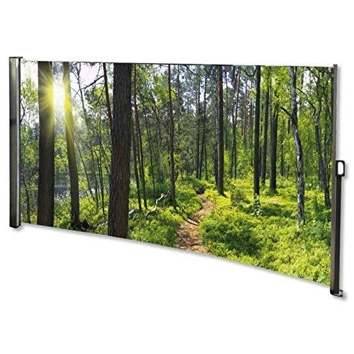 RABURG Seitenmarkise mit Foto Wald Links- Windschutz/Sichtschutz/Seitenrollo 160 x 300 cm