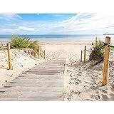Fototapete Strand und Meer 352 x 250 cm Vlies Tapeten Wandtapete XXL Moderne Wanddeko Wohnzimmer Schlafzimmer Büro Flur Beige Blau 9007011b
