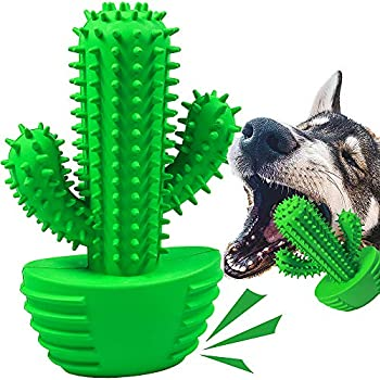 Dog Chew Toys Dog Toothbrush Stick Teeth Cleaning Brush Dental for Small Medium Large Dog Rubber Dog Squeaky Toys for Aggressive Chewers Cactus Tough Toys Interactive for Training Cleaning Teeth