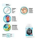 Zoom IMG-2 vitamaze msm capsule alto dosaggio
