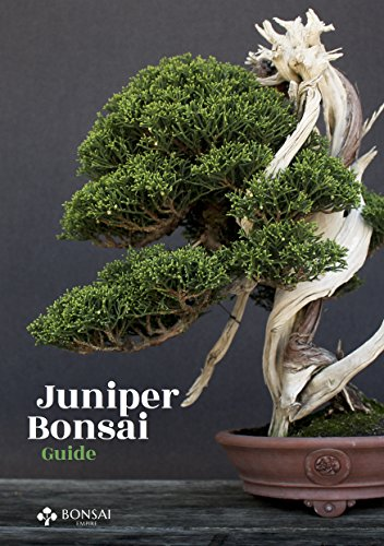 Juniper Bonsai Guide Kindle Edition By Empire Bonsai Jonker O Crafts Hobbies Home Kindle Ebooks Amazon Com