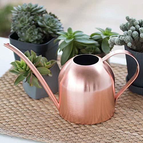 Arrosoir en acier inoxydable - Bonsaï - Bec long - Style moderne - 500 ml - En acier inoxydable - Arrosage long - Pour plantes, plantes d'intérieur, patio, plantes suspendues et extérieur