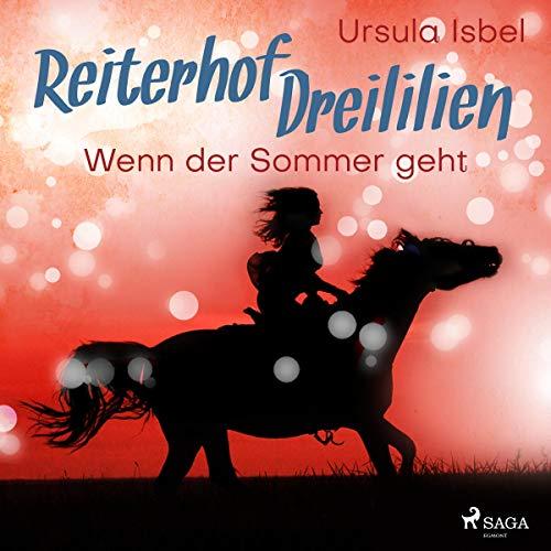 Wenn der Sommer geht audiobook cover art