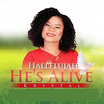 Hallelujah He's Alive