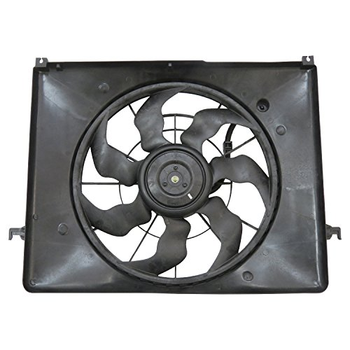 TYC 623330 Replacement Cooling Fan Assembly Compatible with Hyundai S