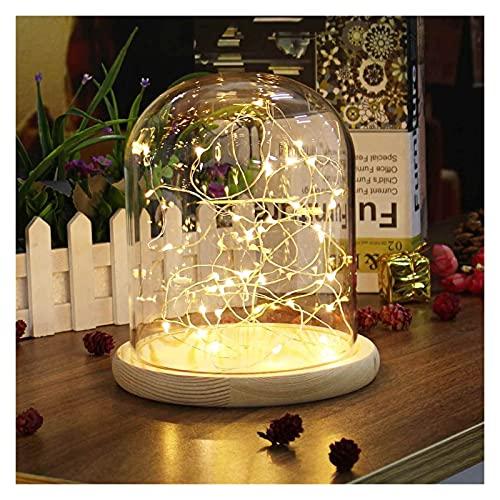YANGYANG Allenzhang Flor Vidrio Jarrón LED Visualización de Vidrio Botellas de la Caja del Globo de la cúpula con la decoración de la luz de la luz de la Noche de la Flor de la Flor de la Flor