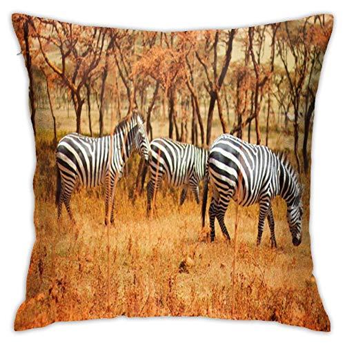 Zebras On The Grasslands Of Tanzania, funda de almohada cuadrada personalizada para sofá, dormitorio, oficina, 45,7 x 45,7 cm