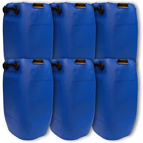 Wilai GmbH Lot de 6 bidons – Jerrican 60 L, 3 poignées, Bleu HDPE Ouverture DIN 71 qualité Alimentaire (6x22047)