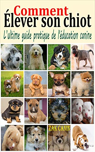 Colliers Anti Aboiements - 10 astuces à savoir - Techniques avancées - Guide du chien
