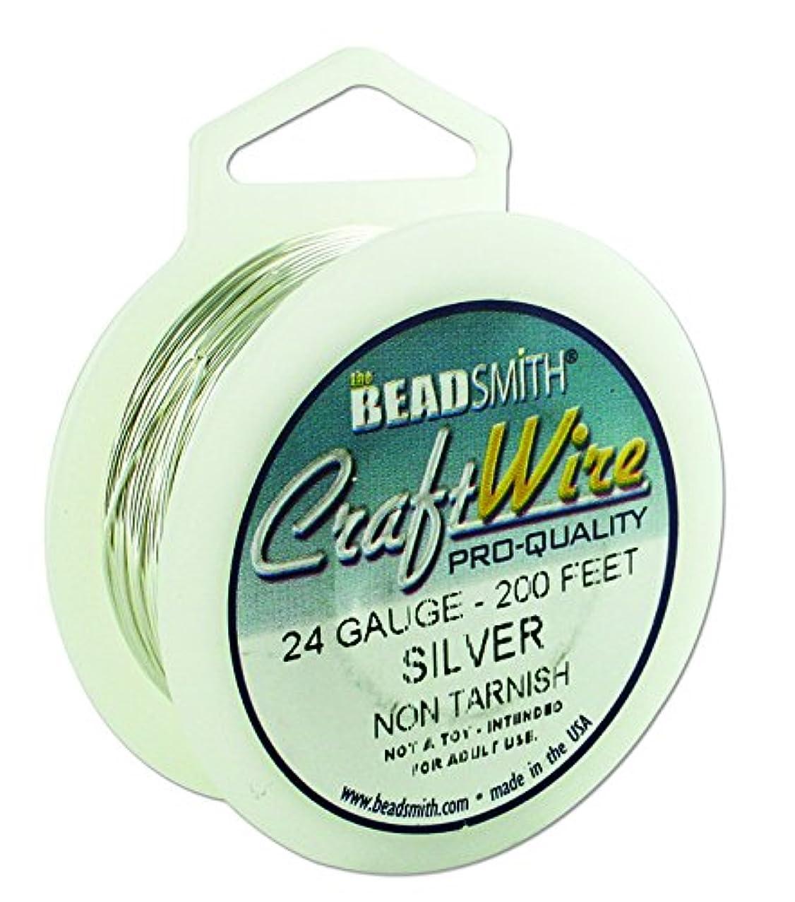 Beadsmith Non Tarnish Craft Wire (24, Silver) xroiqiuthu245
