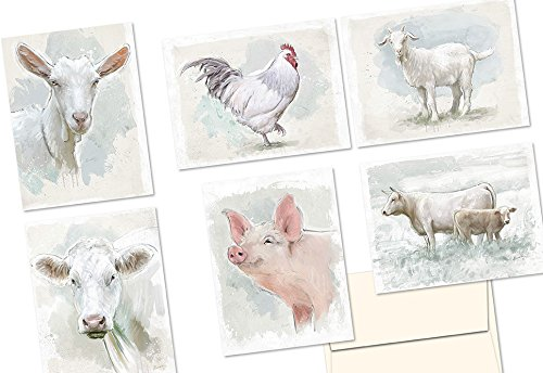 Note Card Cafe All Occasion Greeting Card Set with Envelopes   72 Pack   Blank Inside, Glossy Finish   6 Watercolor Farm Animals Designs   Bulk Set for Greeting Cards, Occasions, Birthdays