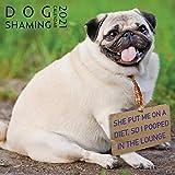 Dog Shaming Calendar 2021, Funny Wall Calendar, Dog Lover, 2021 Dog Wall Calendar