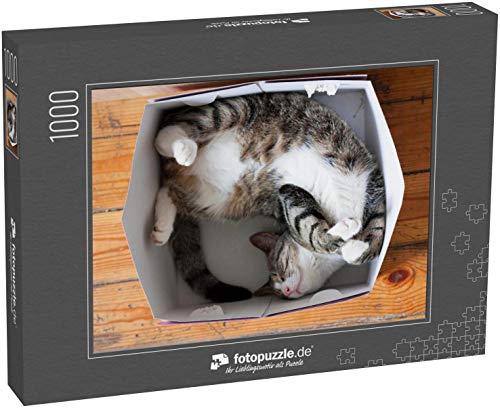 Puzzle 1000 Teile Gestreifte Katze, die in einem Karton schläft - Klassische Puzzle, 1000/200/2000 Teile, in edler Motiv-Schachtel, Fotopuzzle-Kollektion 'Tiere'