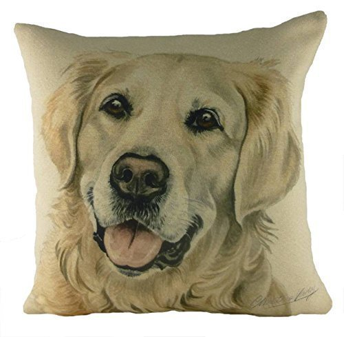 Evans Lichfield WaggyDogz Golden Retriever Filled Cushion with Country Check Made in UK by Evans Lichfield