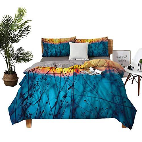 Juego de sábanas de 4 piezas para cama infantil, diseño de flores secas, ramas, paisaje tranquilo, agricultura, campo de otoño, azul pálido, melocotón, naranja, tamaño king...