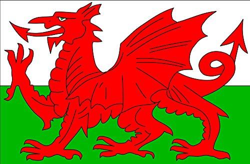 Shatchi 1,5 x 0,9 m Pays de Galles Gallois Dragon Drapeau National Drapeaux d'événements Sportifs Pub BBQ Décorations Bannière Support pour Table de Football Coupe du Monde de Rugby